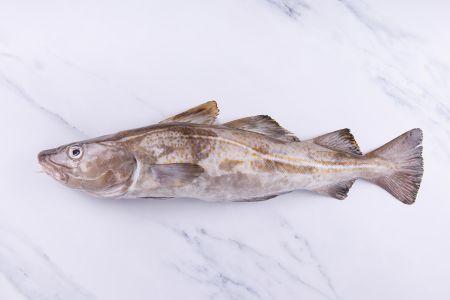 Cod Cheeks 350g