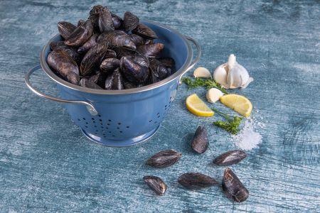 Mussels Frozen