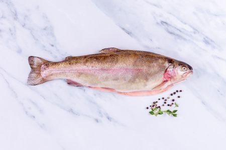 Rainbow trout (Cornish) 400-600g