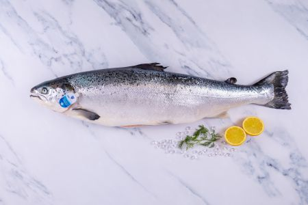 Loch Duart Salmon Whole Fish
