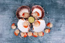 King Scallops Dozen