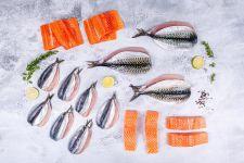 Omega3 Oily Fish Box 20 portions