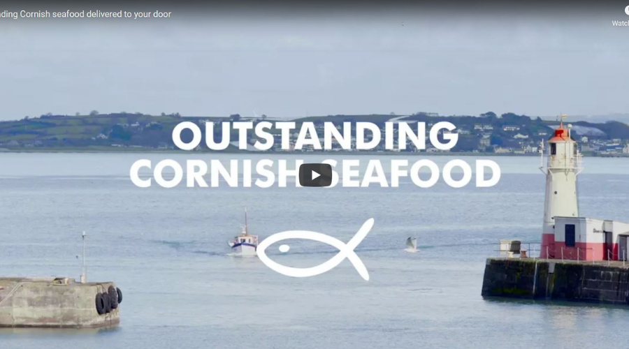 Find out how our fish is so fresh