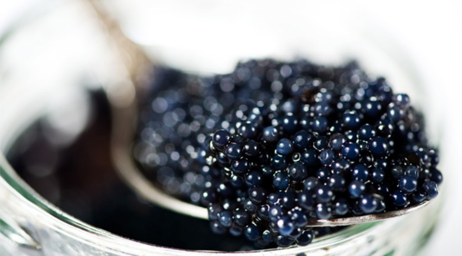 Sustainable Caviar Sunday's Daily Mail comments