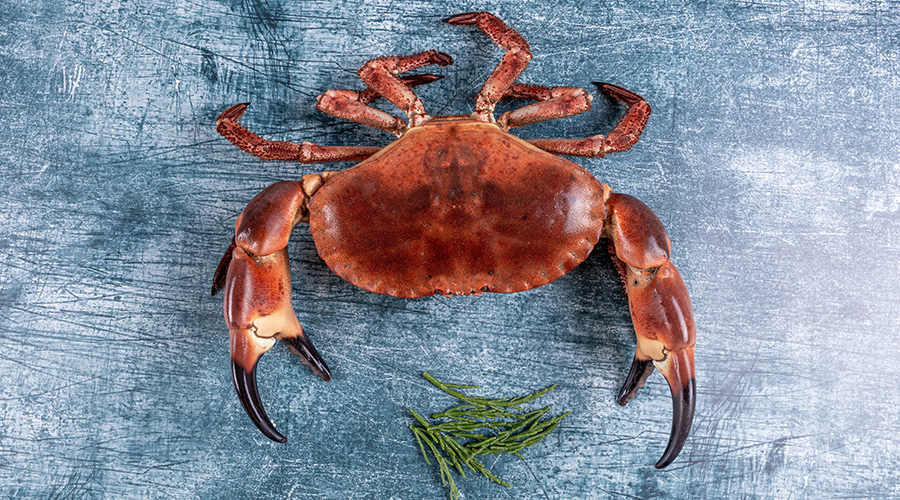 How to cook crab